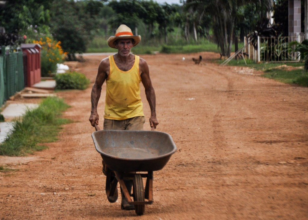 Trabajador del Campo, en Artemisa